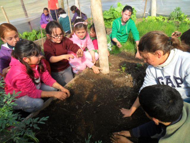 CEIMER Niños en la quinta con las manos en la tierra