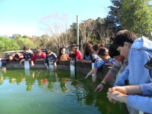 CEIMER Niños observando peces