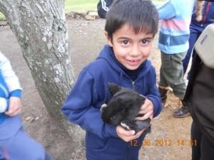 Ceimer Alumno chiquito con conejo