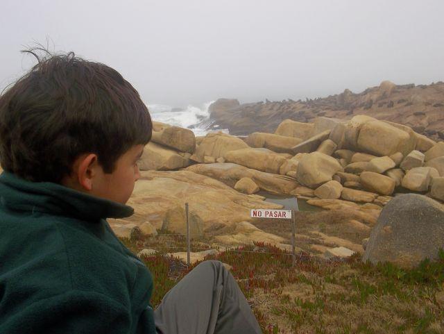 Ceimer Alumno mirando el mar