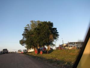 Escuela 17 y tractor