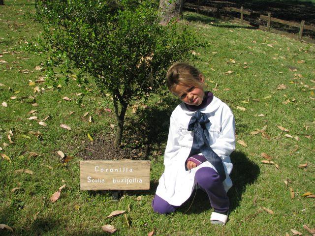 Escuela 34 Niñita y árbol
