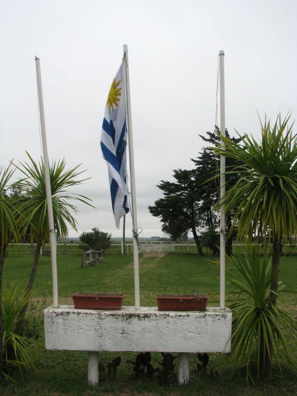 bandera de la entrada